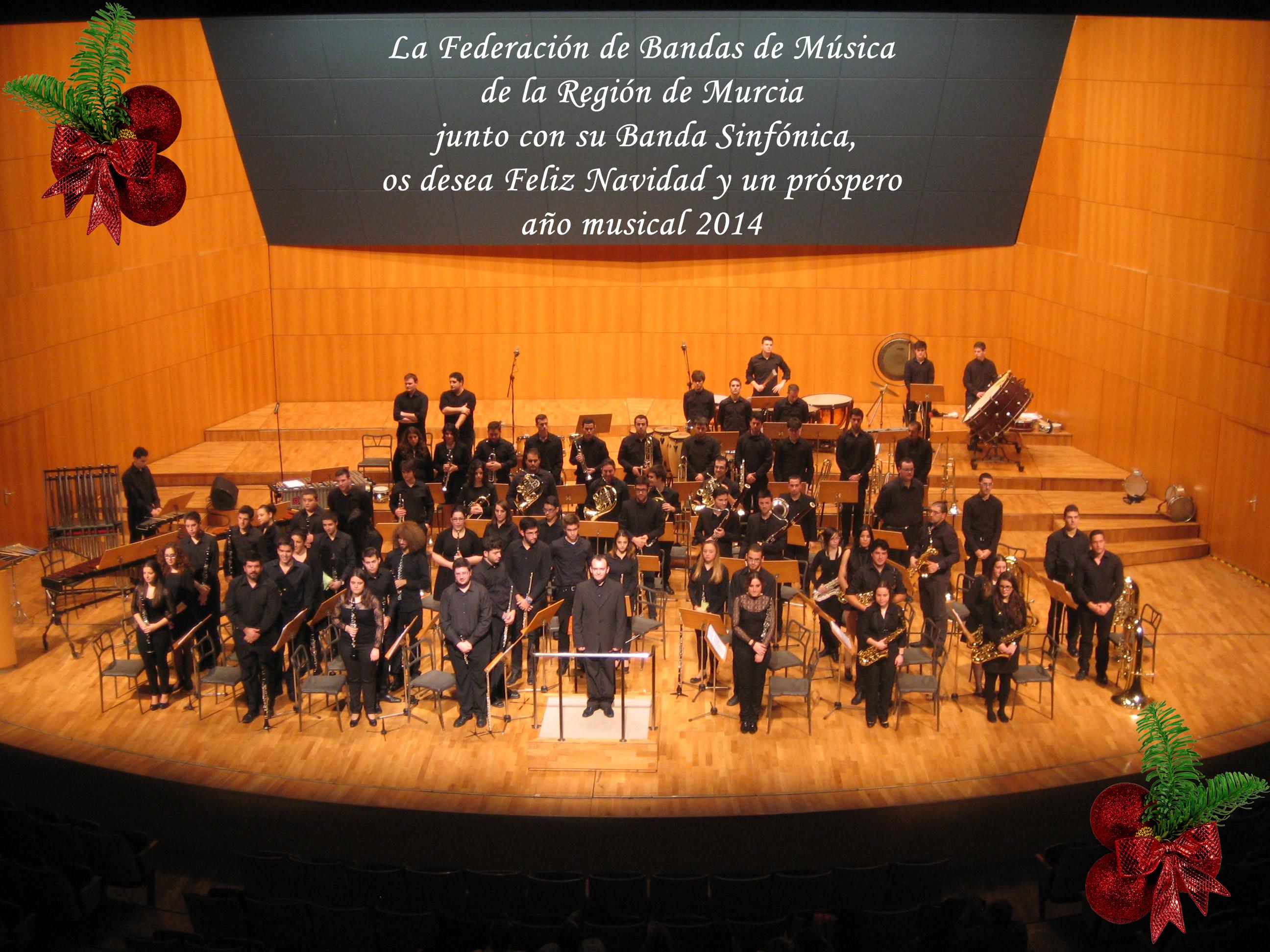 Banda Sinfonica 2013-Murcia 003
